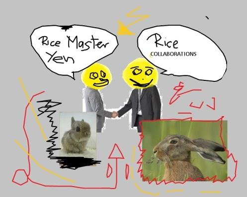 Rice Master Yen